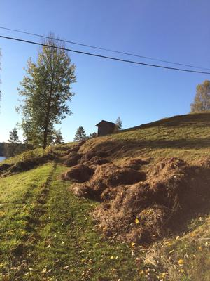 Veien mot Børli. Foto/Photo