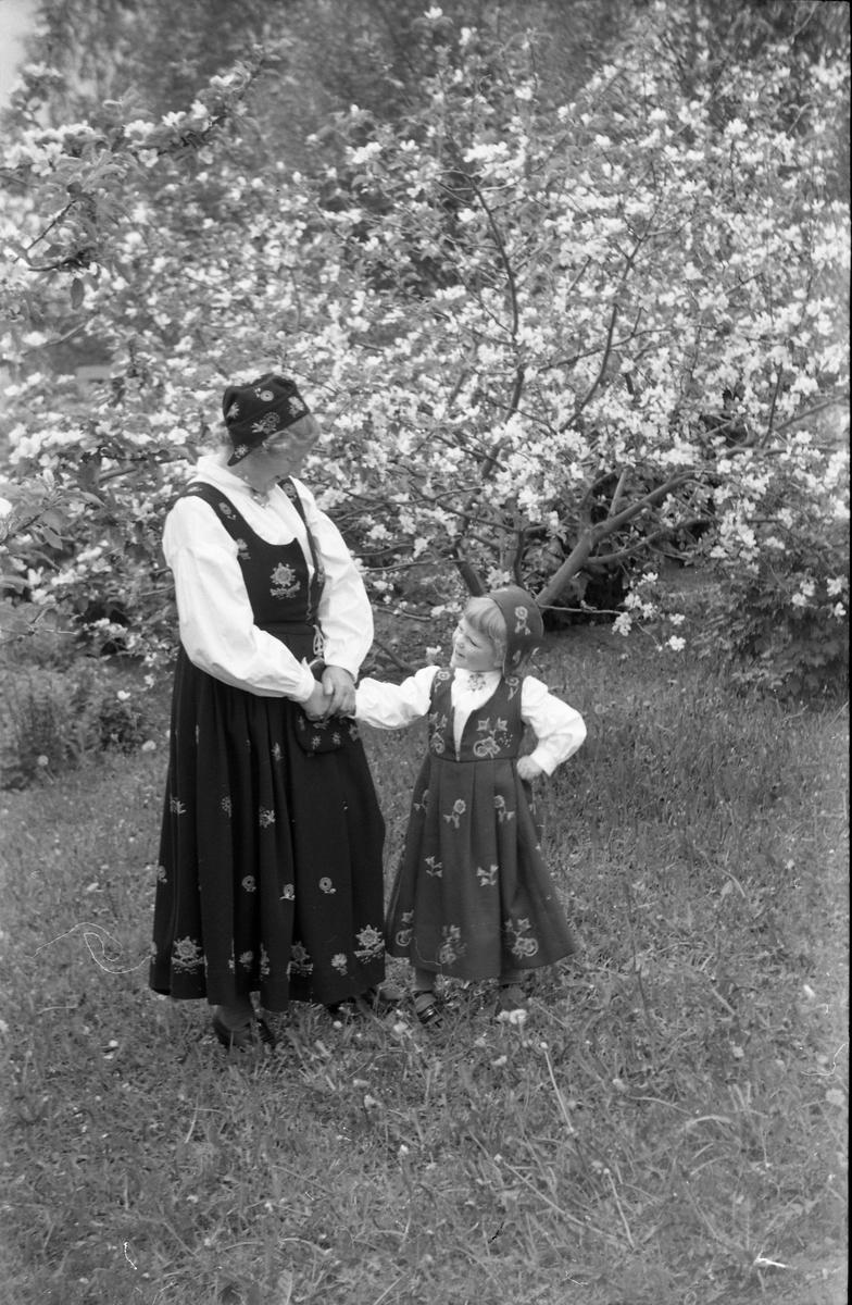 Serie på 11 helfigurs portretter av Dagmar og Michael Nordrum med dattera Else Marie mot en bakgrunn av et blomstrende frukttre. Noen av bildene er av de tre sammen, noen av mor og datter som begge bærer bunad, og noen av Else Marie alene.