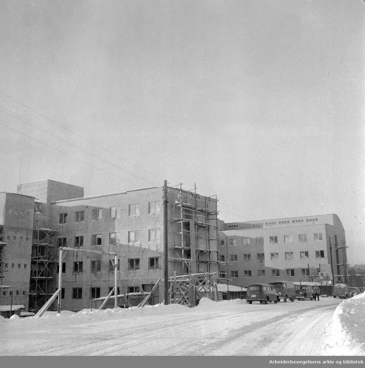 Papirindustriens forskningsinstitutt under bygging. Januar 1956