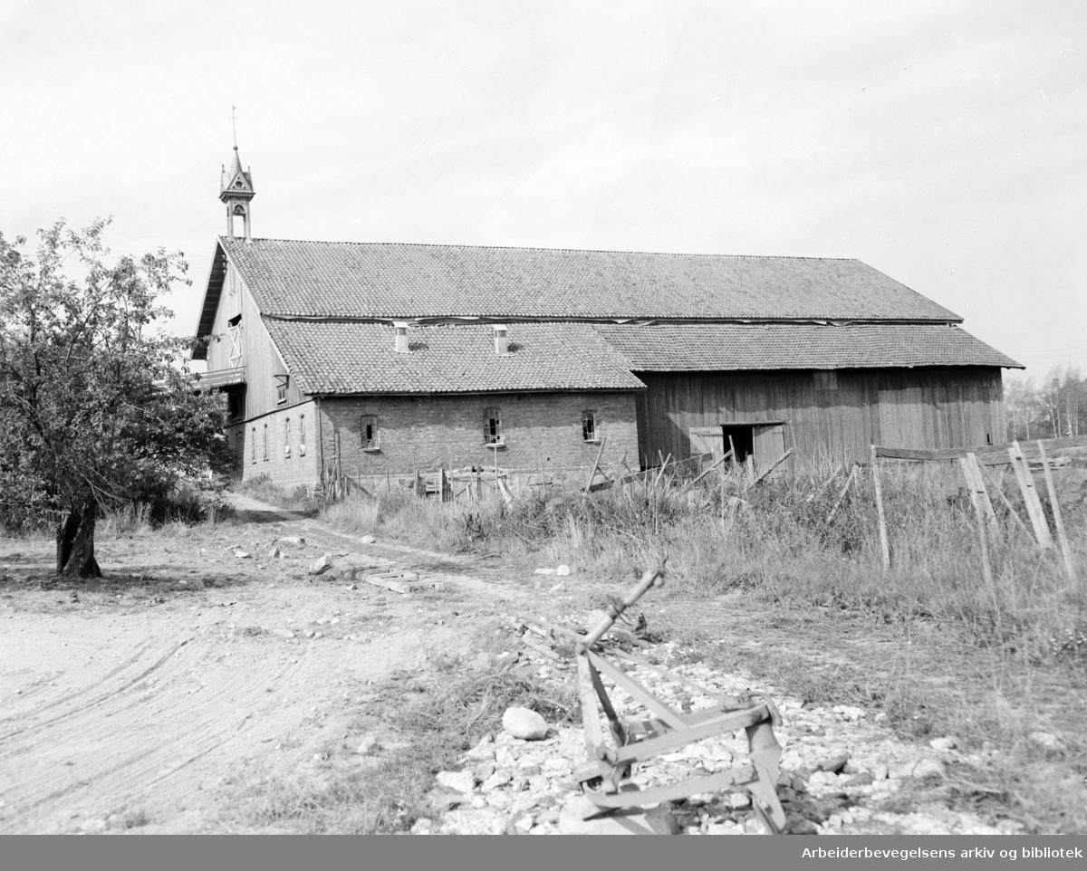 Lambertseter gård. August 1955