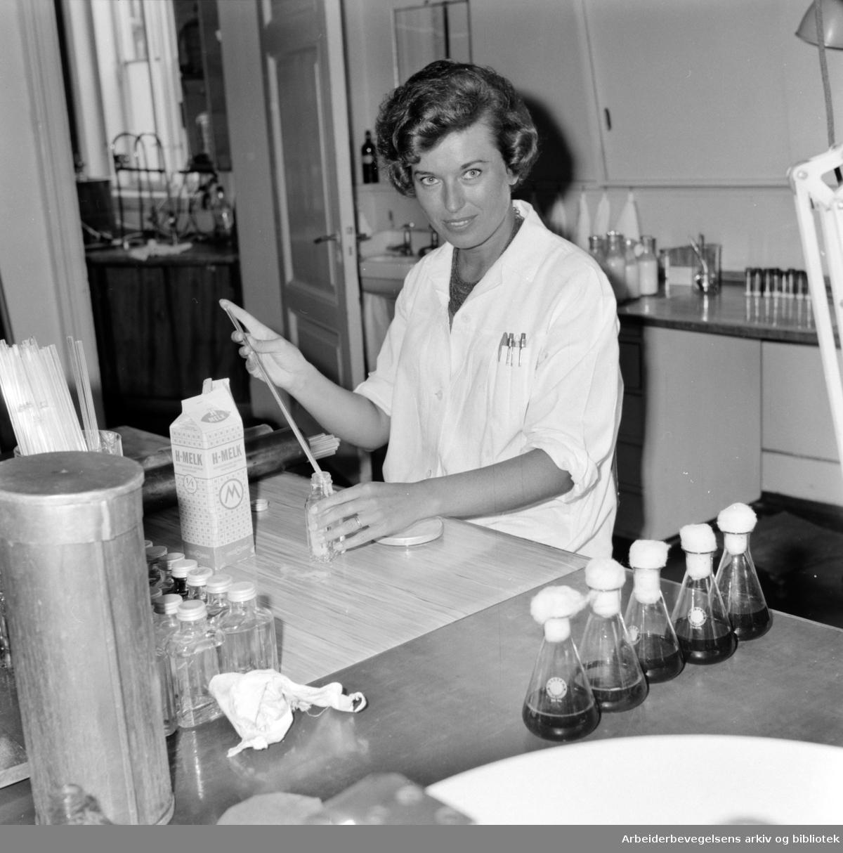 Helserådet. Næringsmiddelkontrollen. Laborant Anne-Lise Christiansen. August 1961