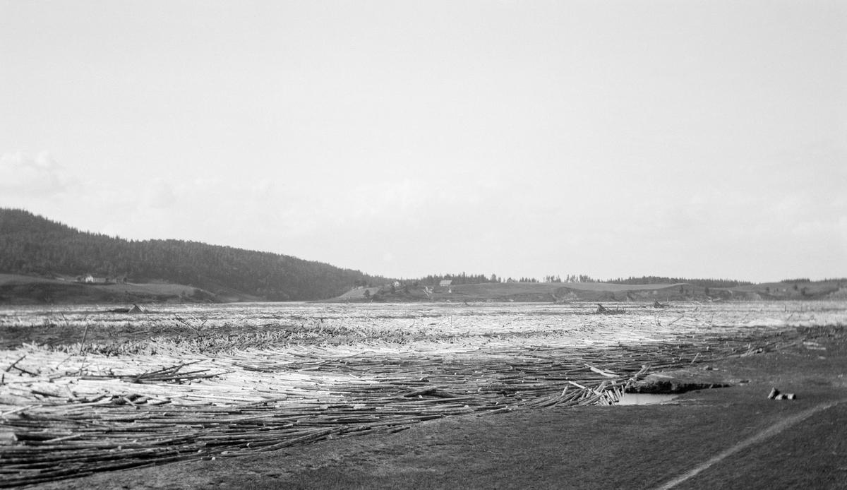 Store, sammenvasete tømmermengder i Glomma ved Bingen i Sørum i Akershus.  Fotografiet er muligens tatt i 1916, i et område der elva vider seg ut nedenfor Bingsfossen.  Dette er antakelig det området der Bingen lense lå før jernbanen kom og lensestedet ble flyttet området ved jernbanebrua i Fetsund, litt lengre sør.  I bakgrunnen ses en skogkledd ås med litt bakkete jordbrukslandskap nederst mot vassdraget. Fløting av tømmer.