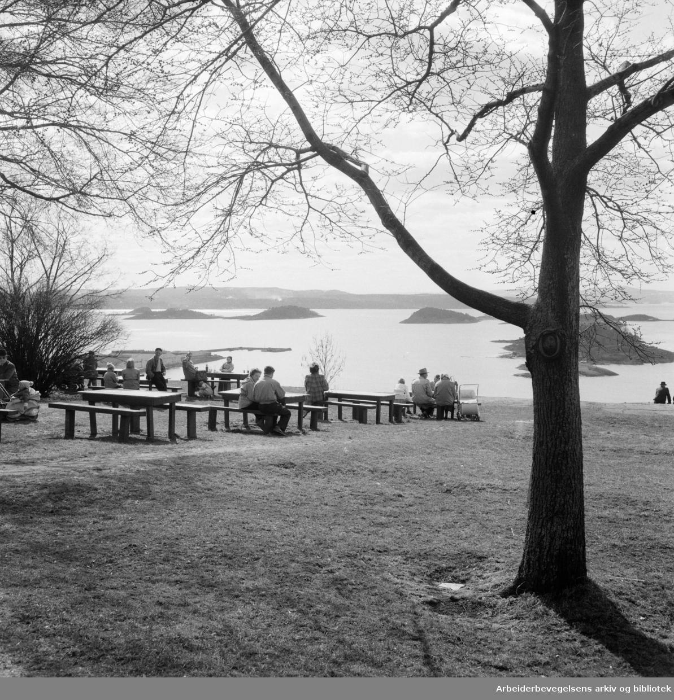Ekeberg. Utsikt fra Ekeberg. April 1952