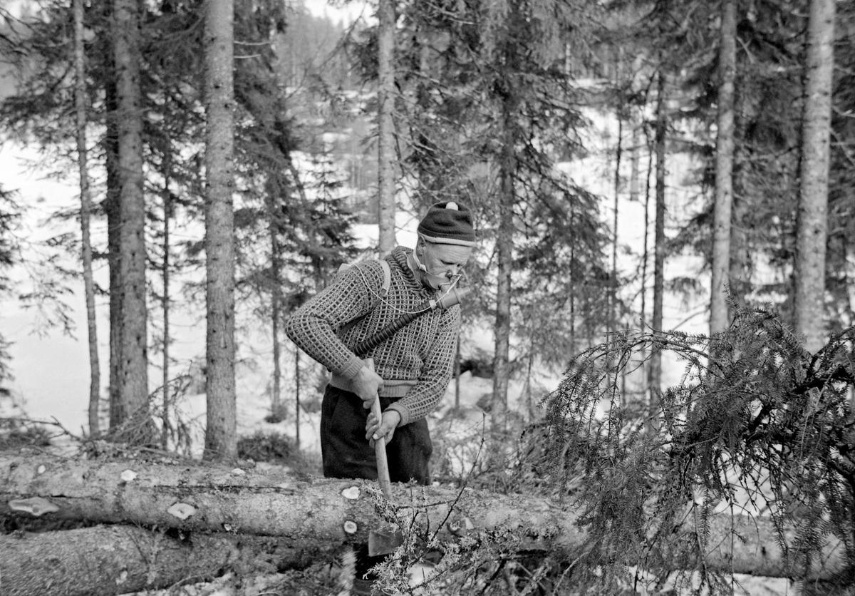 Skogsarbeider Gustav Tallakstad (1911-1982) fra Lardal i Vestfold, fotografert i arbeid i Treschow-Fritzøes skog på Akerholt i Lardal under den store hogstundersøkelsen i 1965.  Da dette fotografiet ble tatt kvistet Tallakstad ei gran ved hjelp av øks.  Han var påmontert arbeidsfysiologiske registreringsinnretninger.  Den nevnte hogstundersøkelsen ble først og fremst gjort for å kartlegge arbeidsprestasjoner ved avvirkning av gran og furu av ulike dimensjoner, i forskjellig terreng, under vekslende klimatiske forhold og med varierende bearbeiding av stokkene i skogen.  Hovedmålet var å definere normalprestasjoner knyttet til aktuelle driftsopplegg, som et faktagrunnlag for tarifforhandlingene i skogbruket.  Men forskerne viste også en viss interesse for den fysiologiske anstrengelesene som lå bak arbeidsprestasjonene.  Norsk Skog- og Landarbeiderforbund og Skogbrukets Arbeidsgiverforening hadde oppnevnt hver sin «typearbeider», som skulle delta i undersøkelsene på mange forsøksfelt rundt i landet.  Disse to karene var også «prøvekaniner» for registreringa av de arbeidsfysiologiske belastningene.  Påfølgende sommer ble hjertefrekvenser og oksygenopptak registrert hos 17 skogsarbeidere over 41 dagsverk.  Gustav Tallakstad var den mannen Skog og Land valgte som sin typearbeider.  Hjertefrekvensen under arbeidet ble registrert via elektroder som var festet mot huden under brystvortene.  Impulser fra elektrodene ble overført via radiosender til en forsterkerenhet som gjorde det mulig for observatører – «tidsstudiemenn» – å registrere frekvensene.  Mer synlig på dette fotografiet er utstyret som ble brukt til å registrere åndingsaktiviteten.  Det besto av et tørrgassur som ble båret på ryggen.  Denne enheten hadde slangeforbindelse til ei maske foran munnen.  I denne maska satt det en tovegs ventil med liten motstand.  Pusting gjennom nesa ble umuliggjort ved hjelp av ei neseklype.  Dette utstyret ble brukt i 8 til 12 minutters intervaller før man fikk prøver som var anal