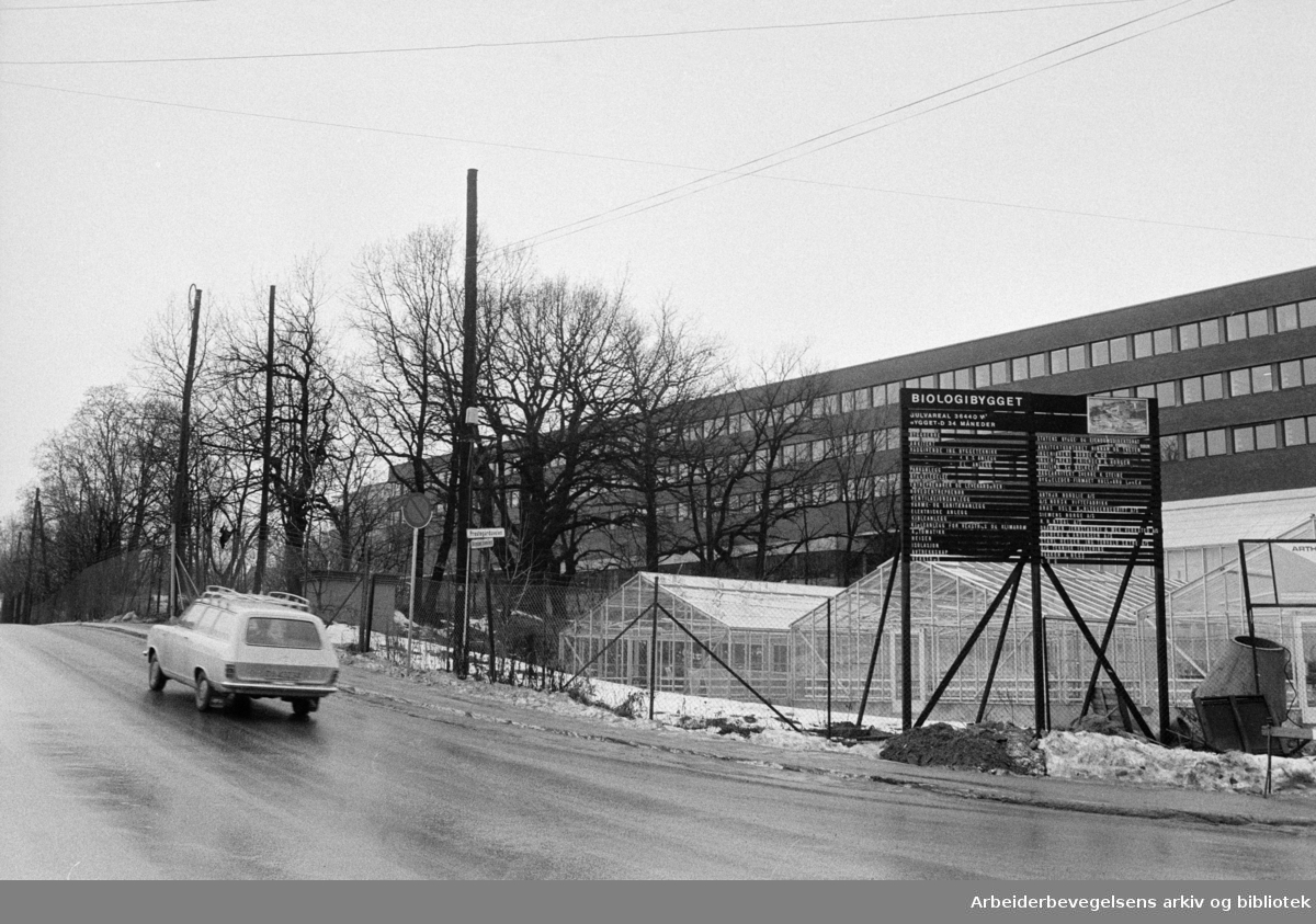 Blindern: Biologibygget. Desember 1971