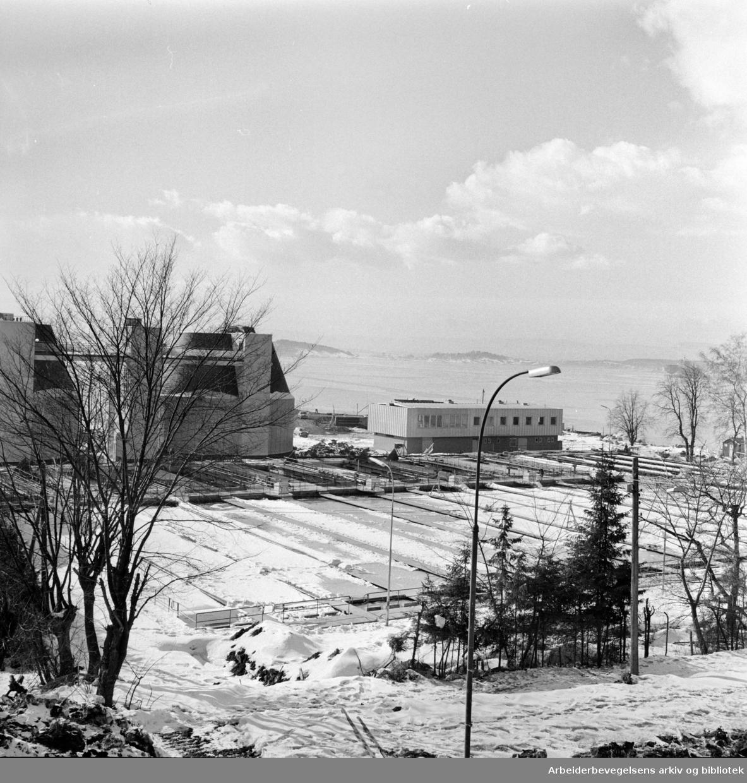 Bekkelaget. Renseanlegget. Mars 1963