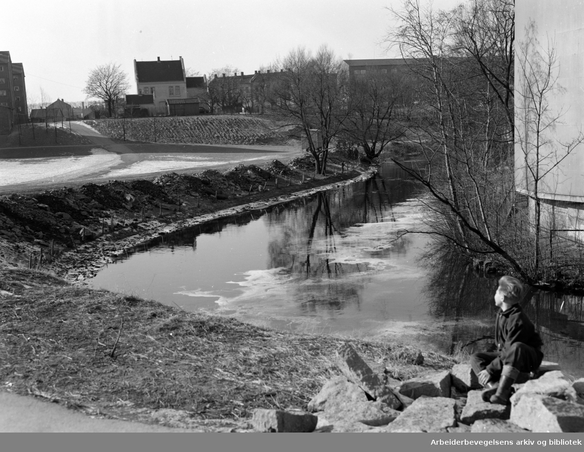 Akerselva ved Treschows bru. Mars 1955