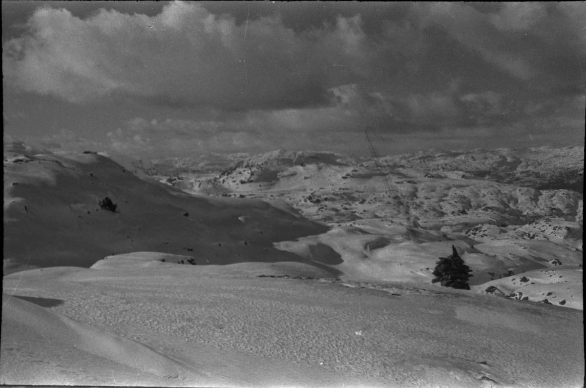 Bilder fra skitur til Stranddalen turisthytte og en annen hytte i Suldal. Det er bilder av fjellene rundt og av hyttene i blest og solskinn.