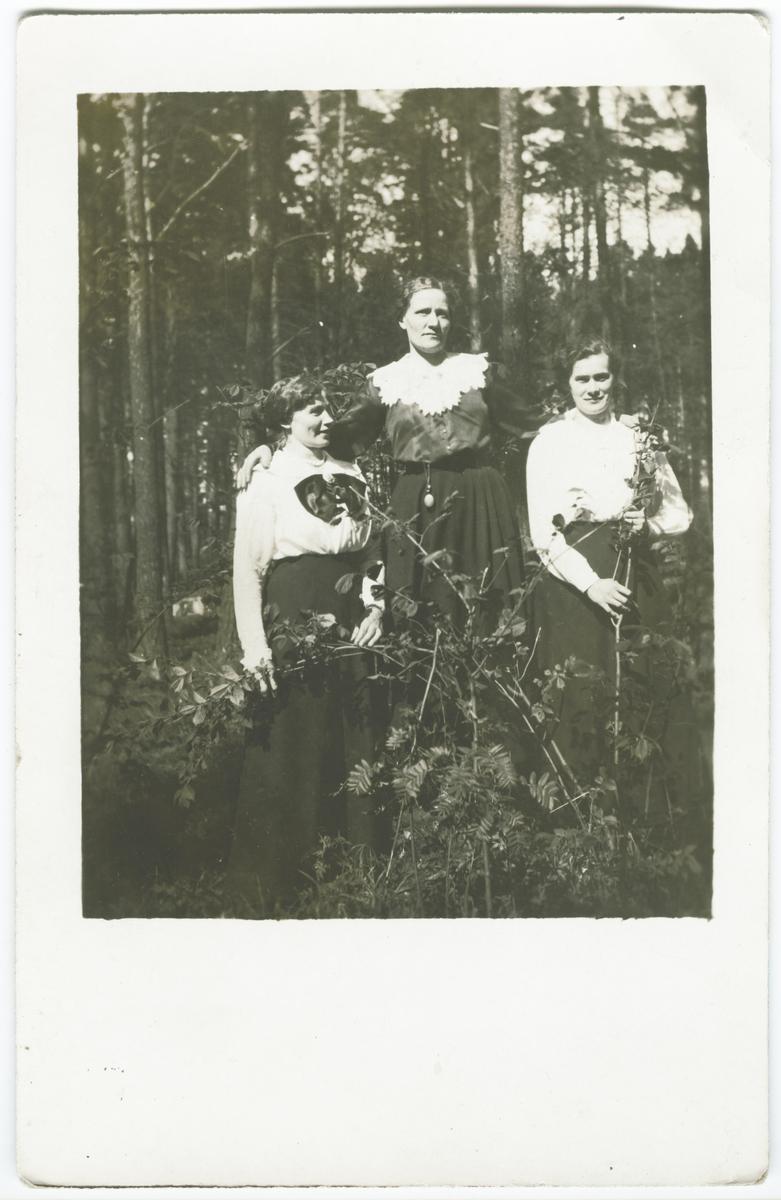 Porträtt, gruppbild