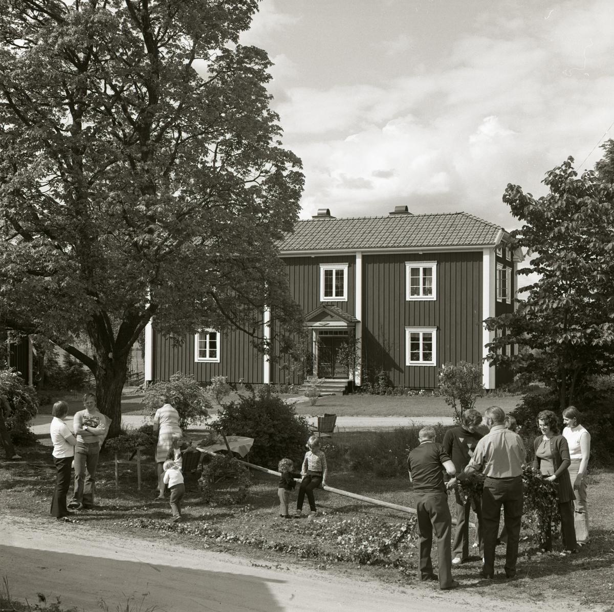 En grupp människor klär midsommarstången vid gården Sunnanåker, 1972.