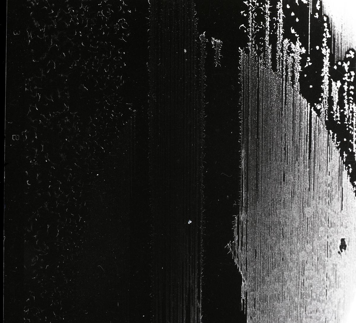 Rimfrost som bildat ett mönster med raka linjer.