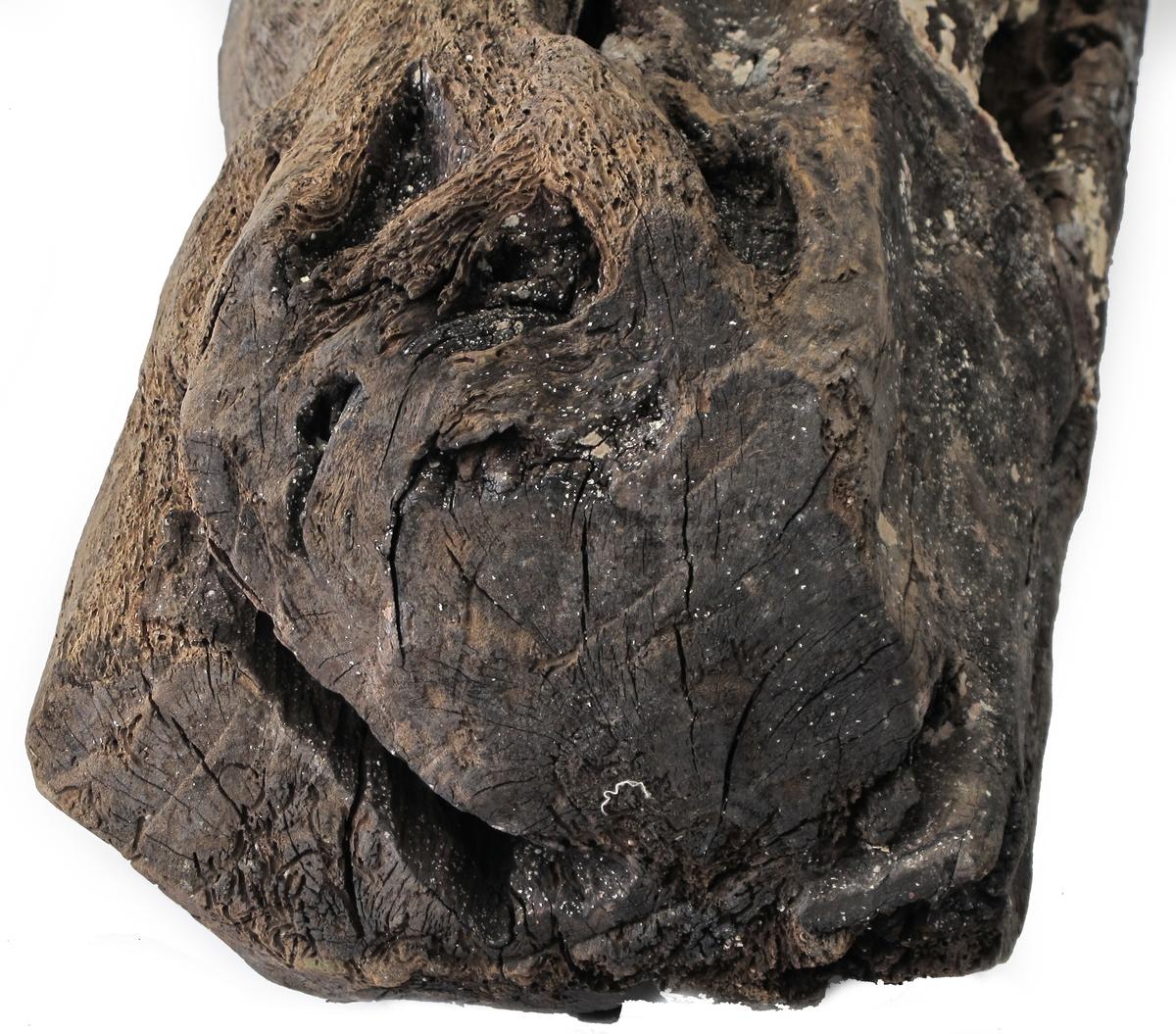 Fargetre, campuchetre, logwood.  f) Kubbe av fargetre, fin glatt overflate på en side, oppspist av pælemark på motsatt side. Fin snittflate i en ende. En utstående kvist.