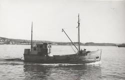 M/S 'Eidsvold I' (Ex. Provider)(b.1898, ukjent verft, Lowest