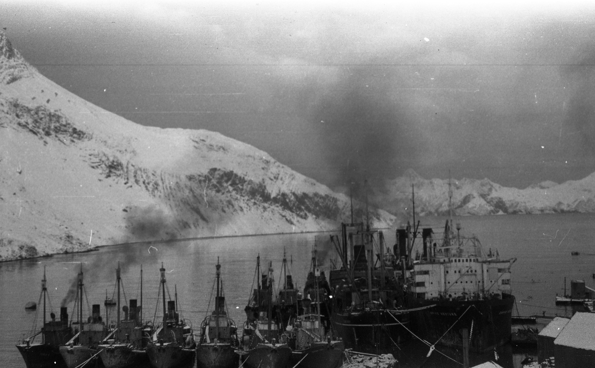 Leith Harbour. En samling av hvalbåter i havnen. Fjell med snø på toppene. Suderøy på fangstfeltet.