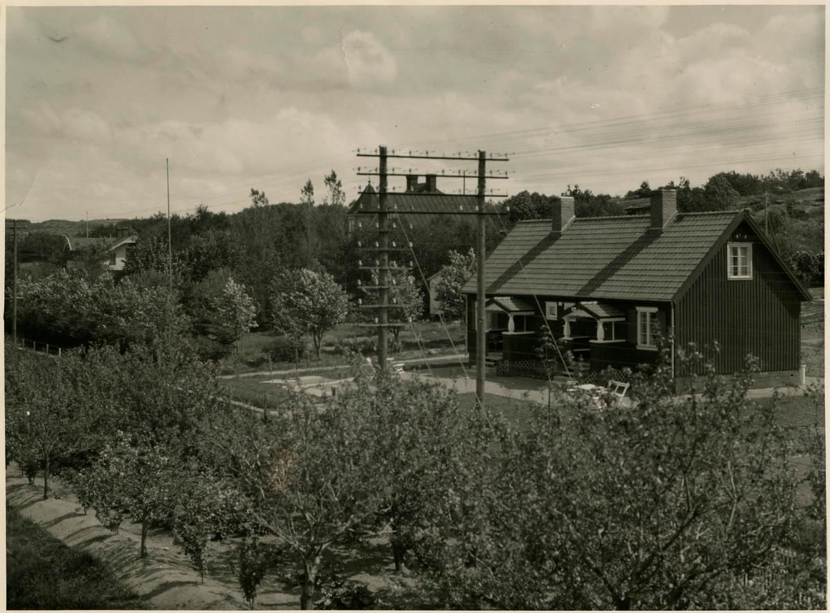 Fruktträdgården vid boställshuset i Stenungsund.