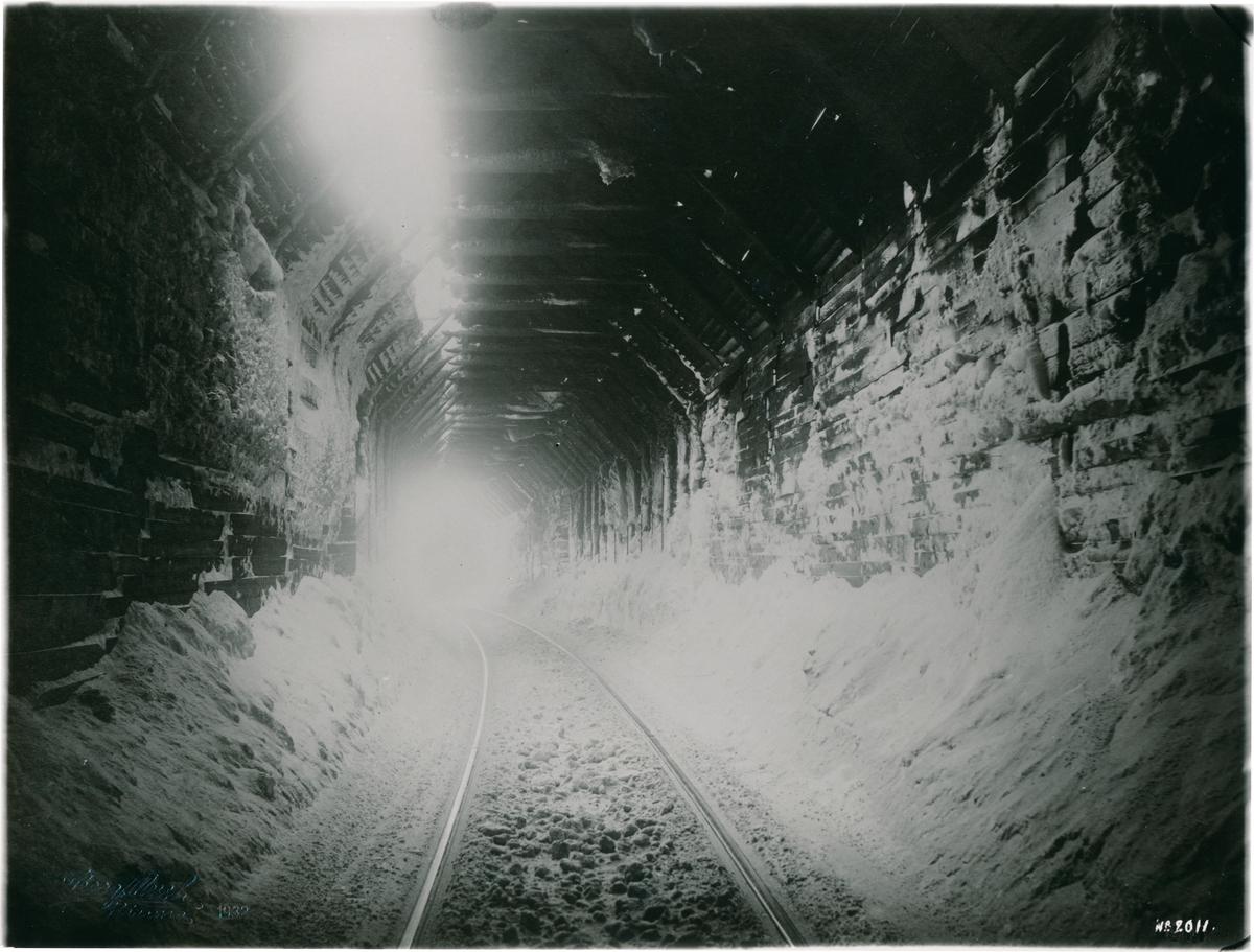 Statens Järnvägar, SJ, Interiör av tornehamns - tunnel.