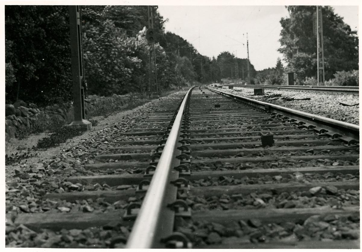 Järnvägsräls fäst med fjäderspik.