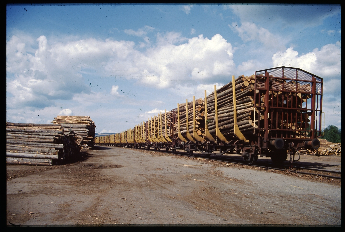 Timmervagnar vid timmergård.