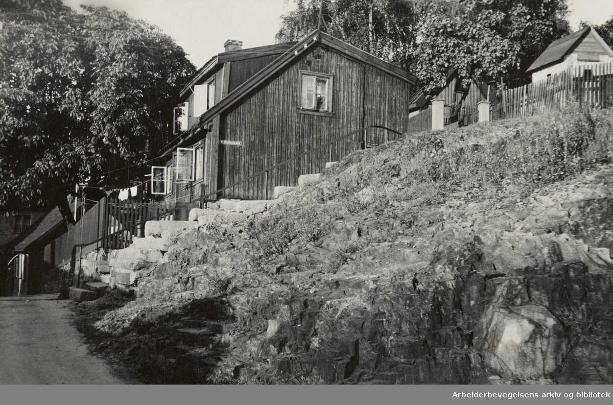Enerhaugen. Oktober 1948