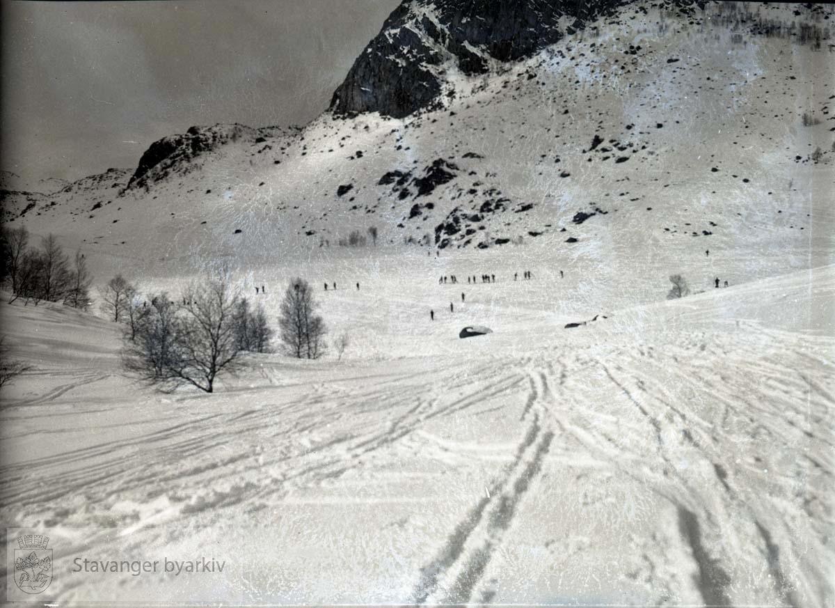 Vinterlandskap på fjellet.