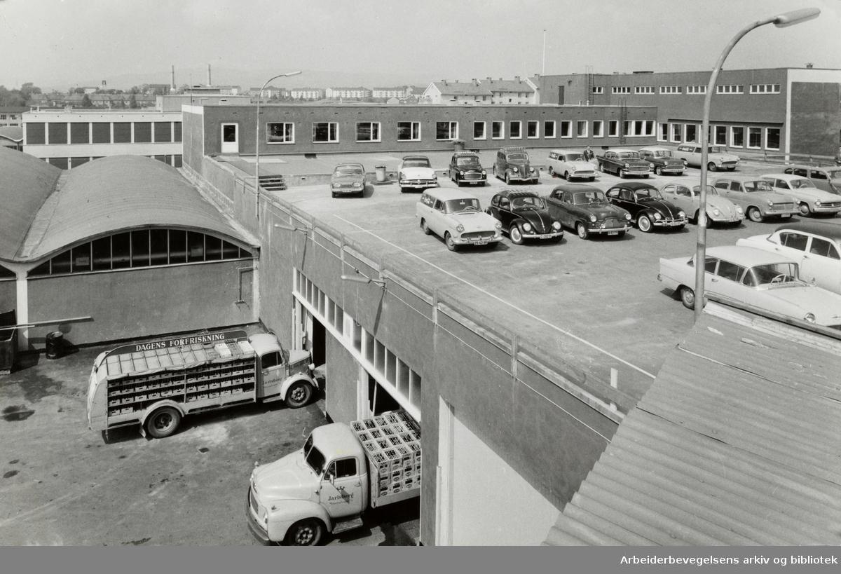 Grenseveien. Jarlsberg Mineralvannfabrikk. Juni 1961