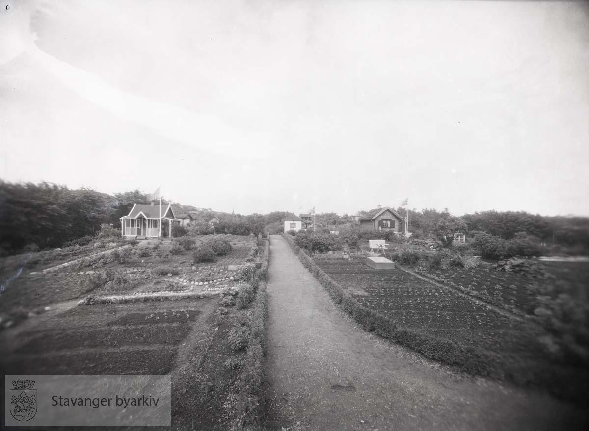 Rosendal og Ramsvik kolonihager (?)