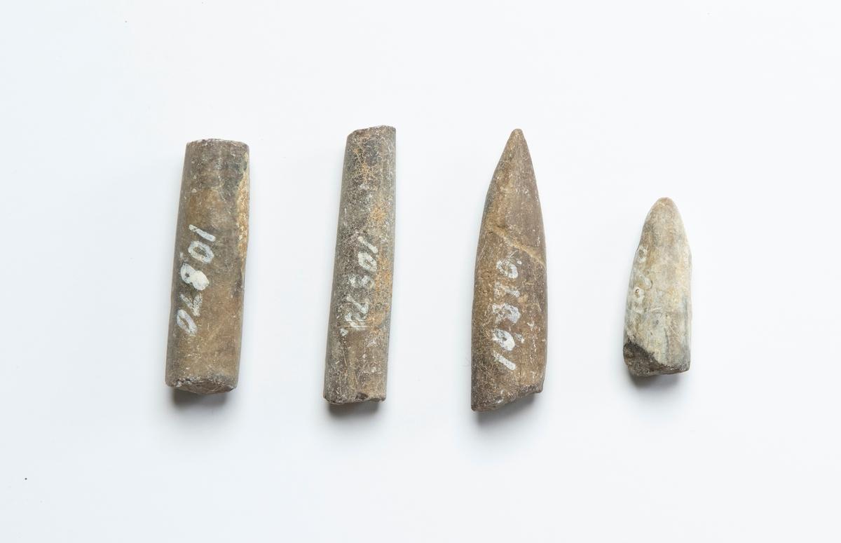 Fossil av belemniter (utdöda bläckfiskar), 4 stycken. Dessa är stenliknande och spolformade samt avbrutna.  JM 10870:1, spetsig respektive trubbig ände, längre. JM 10870:2, spetsig respektive trubbig ände, kortar. JM 10870:3, trubbiga ändar, längre. JM 10870:4, trubbiga ändar, kortare.