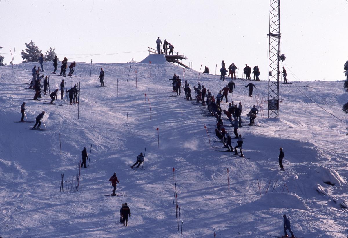 Slalomåkare i Teknikbacken. Många skidåkare står, vid sidan av spåret, och tittar på.