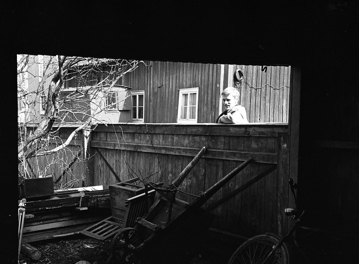 En man tittar över ett plank. I hörnet, av trädgården, ligger en pinnstol, en skottkärra och en cykel. Bostadsmiljö. Fotografens anteckning: Dokumentation av fastigheter i kvarteren söder och norr om ån. Bilder och beskrivningar finns på Arboga museum.