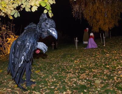En svart ravn danser rundt som en skjebnefugl.