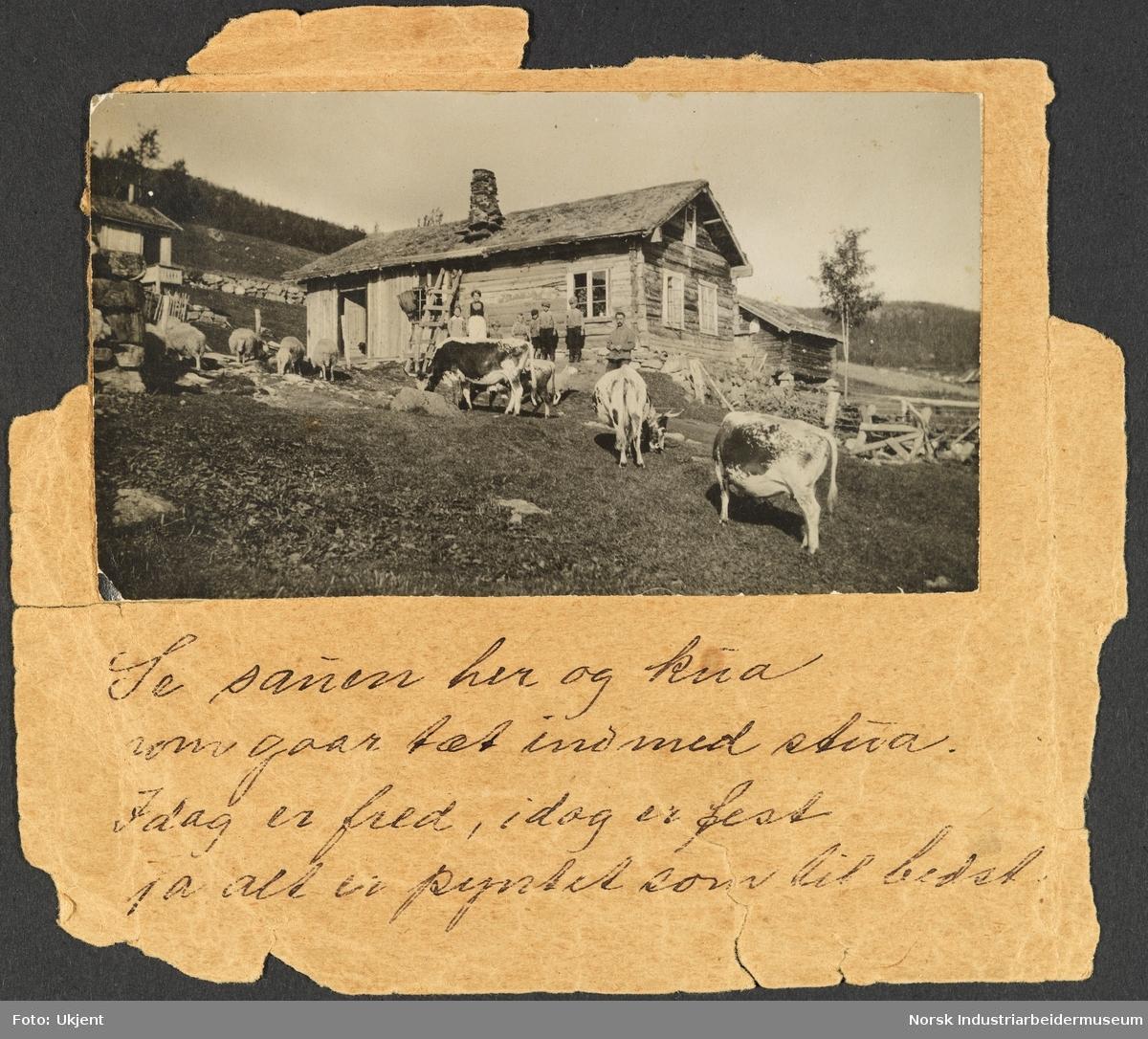 Gården Nord-Vågen på Møsstrond. Ola og Anne Vågen med barna står ved gamlestugo. I lia gresser Telemarkskyr og sau. Andre hus, fjøs og gårdsbygninger