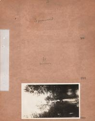 Motiv: Utlandet, Spreewald 92 - 101 ; Landskapsvy med skog