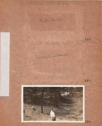 Motiv: Utlandet, Berlins Omgivningar 157 - 177, Djur 178 - 1