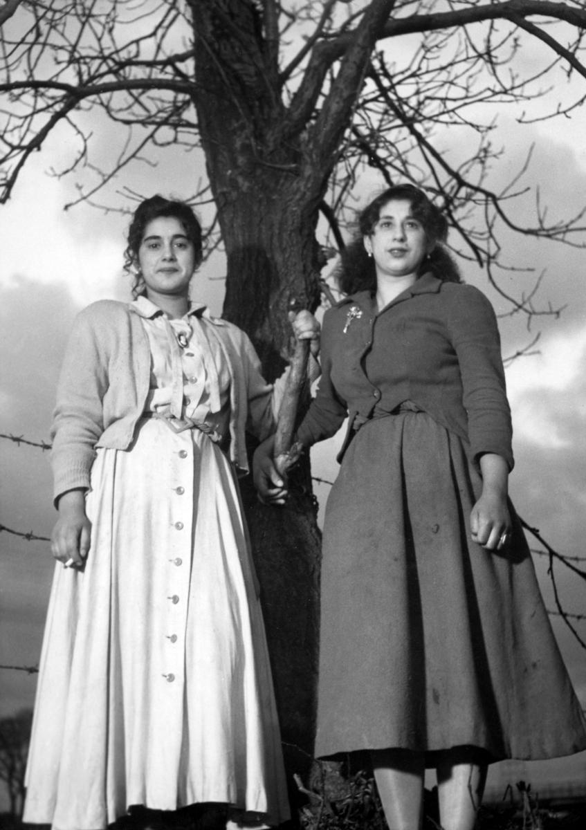 Romska kvinnor har ställt upp sig vid ett träd för fotografering, 1950.