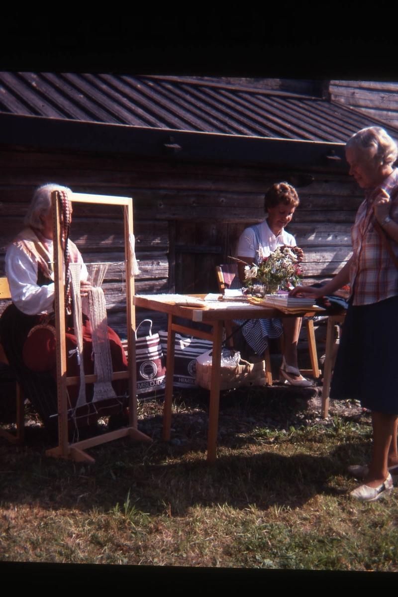 Aktivitetsdag; Aktivitetsdag i Gammelgården
