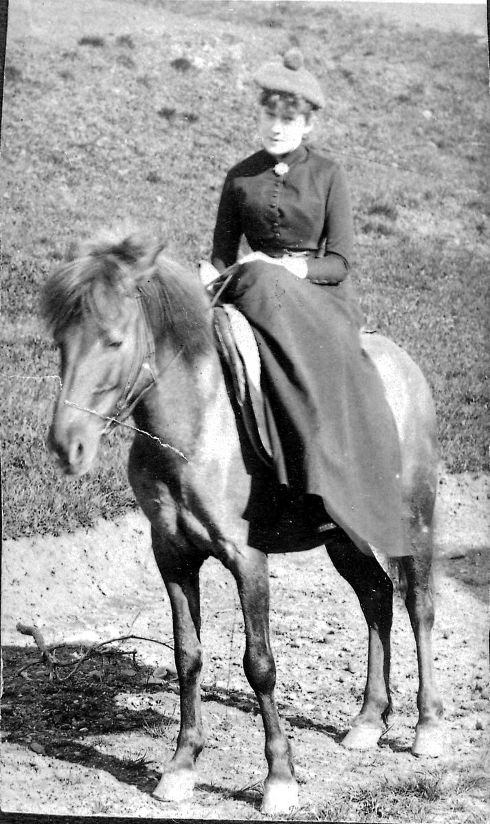 Dagny, hest,