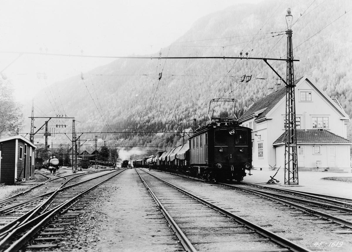 transport, tog, eksteriør, Rjukan, jernbanestasjon, tog