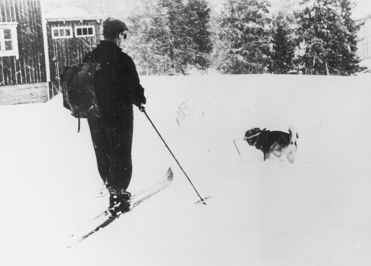 omdeling, Engerdal, postfører, vinterbilde