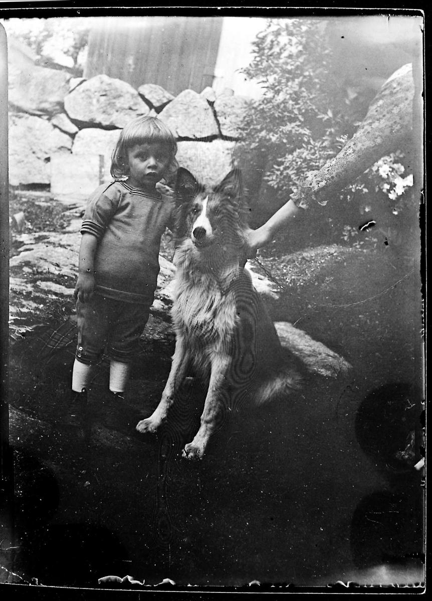 Barn, hund, mur
