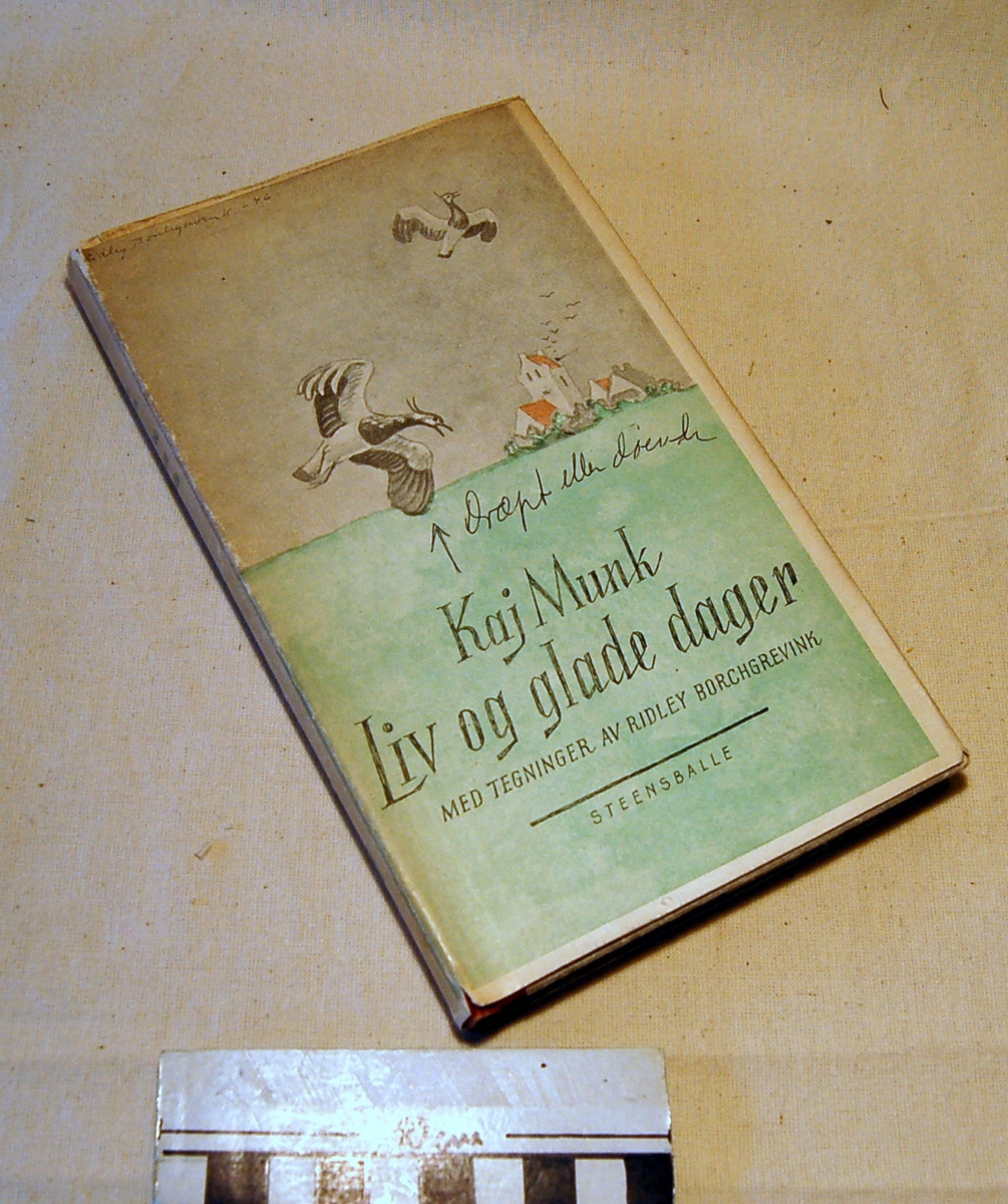 På bokens forside et motiv med en kirke en to ender som flyver