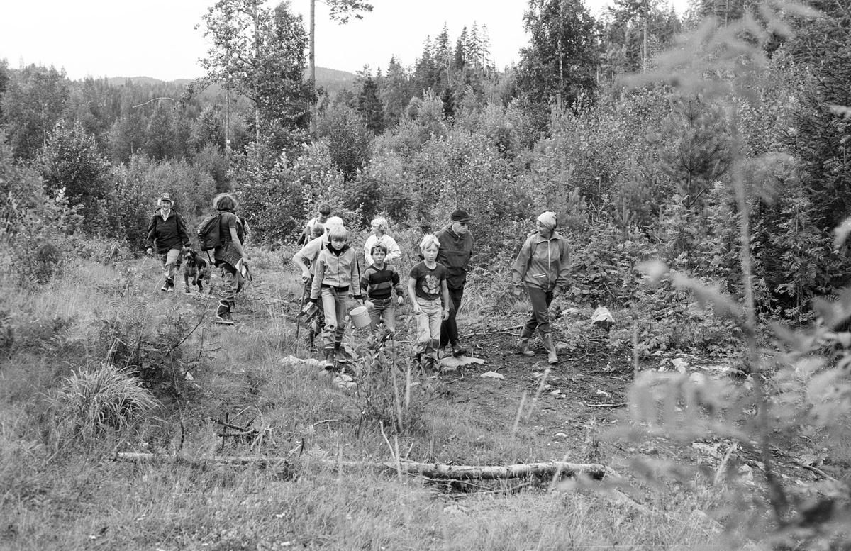 Skogstur Mange personer på tur, skog