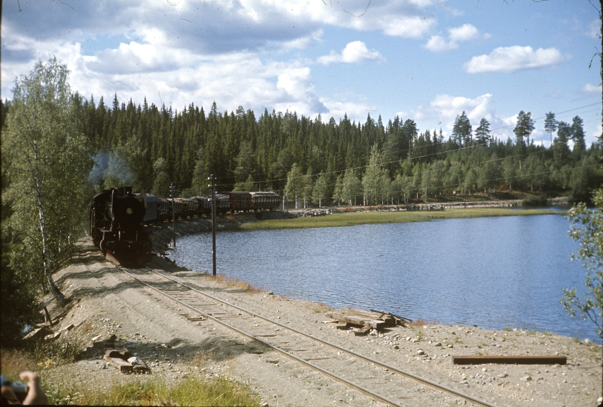 Godstog ved Trevatn på Valdresbanen