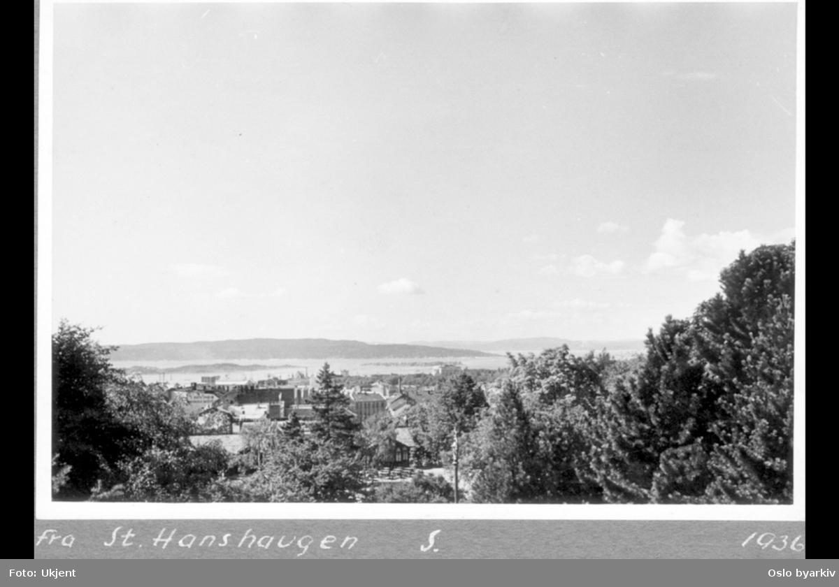 Utsikt over parken i retning sør, med fjorden og Nesodden i bakgrunnen. Resturantbygningene Hasselbakken kan skimtes gjennom trærne.