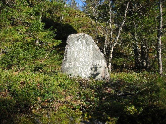 Vanlig grå stein