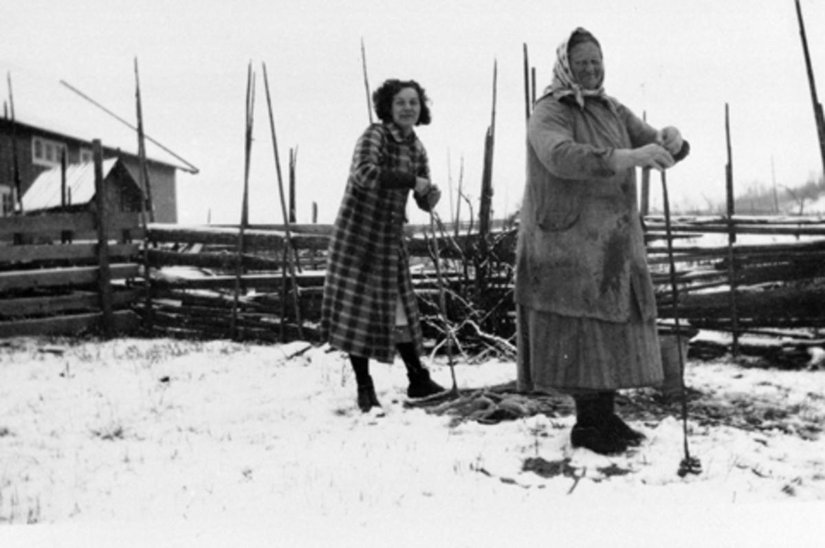 Juleslakting, rensking av tarmer, damer arbeider, fra venstre er Solveig Støtvig, Berte Engelund, seterbudeie, Vetten gård, Furnes, Ringsaker.
