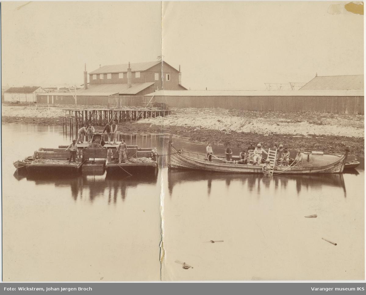 Moloarbeid i Vardø, antatt 1884
