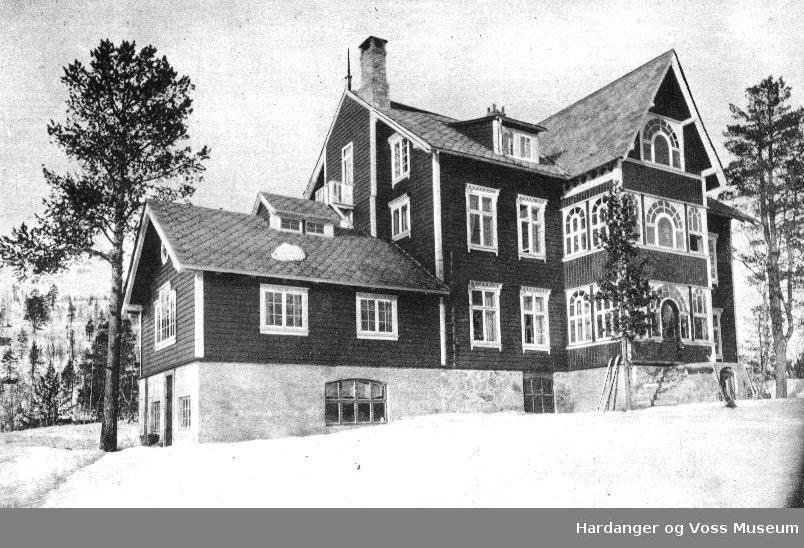 Stadheims høifjellshotell, Mjølfjell hotell