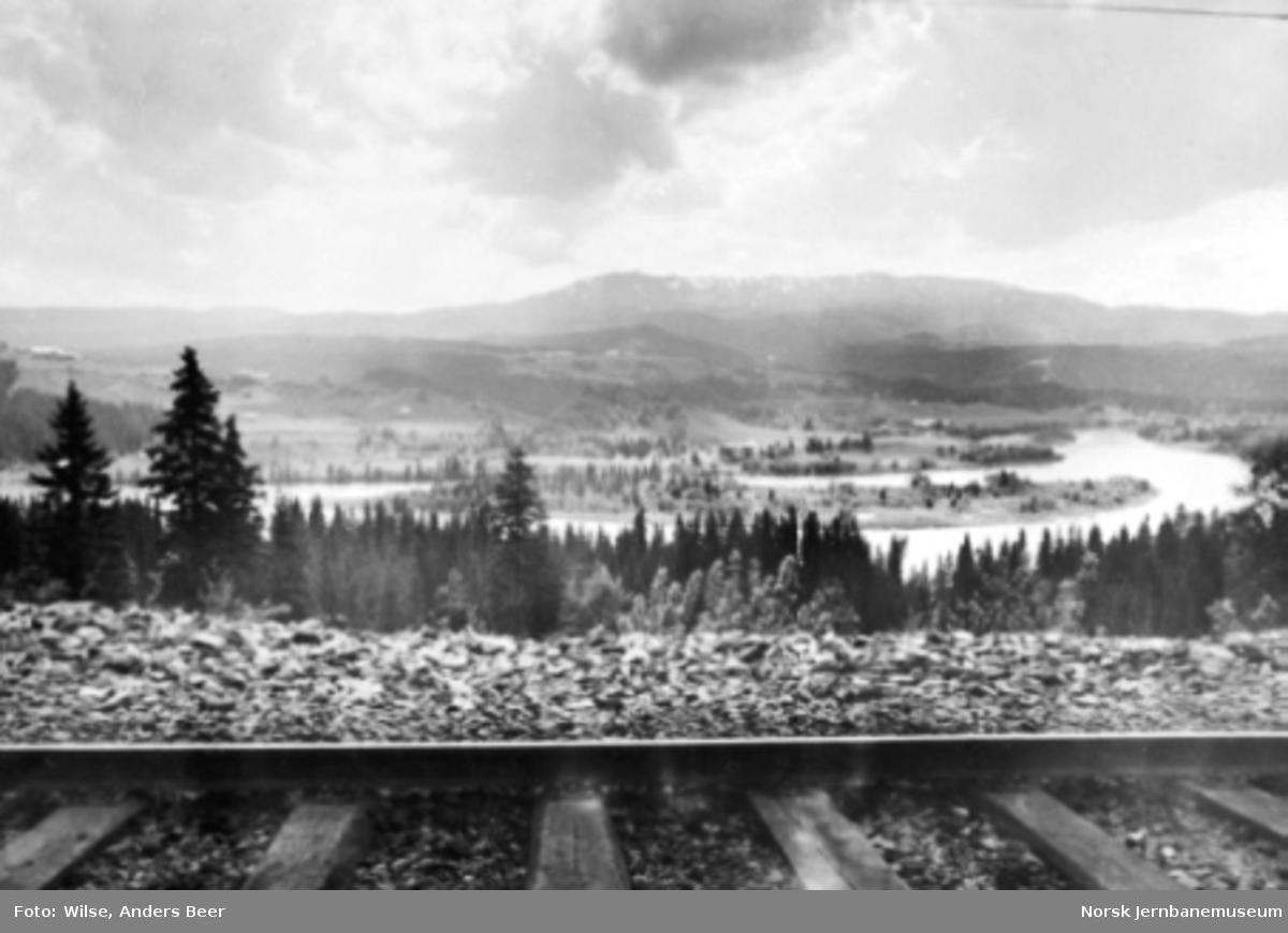Utsikt fra Nordlandsbanen rett nord for Gartland stasjon