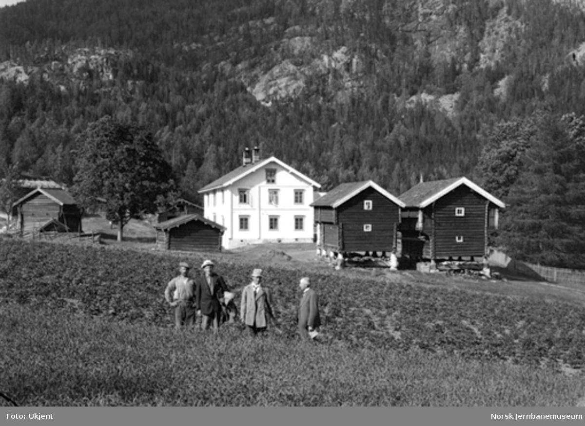 Ulvik gård