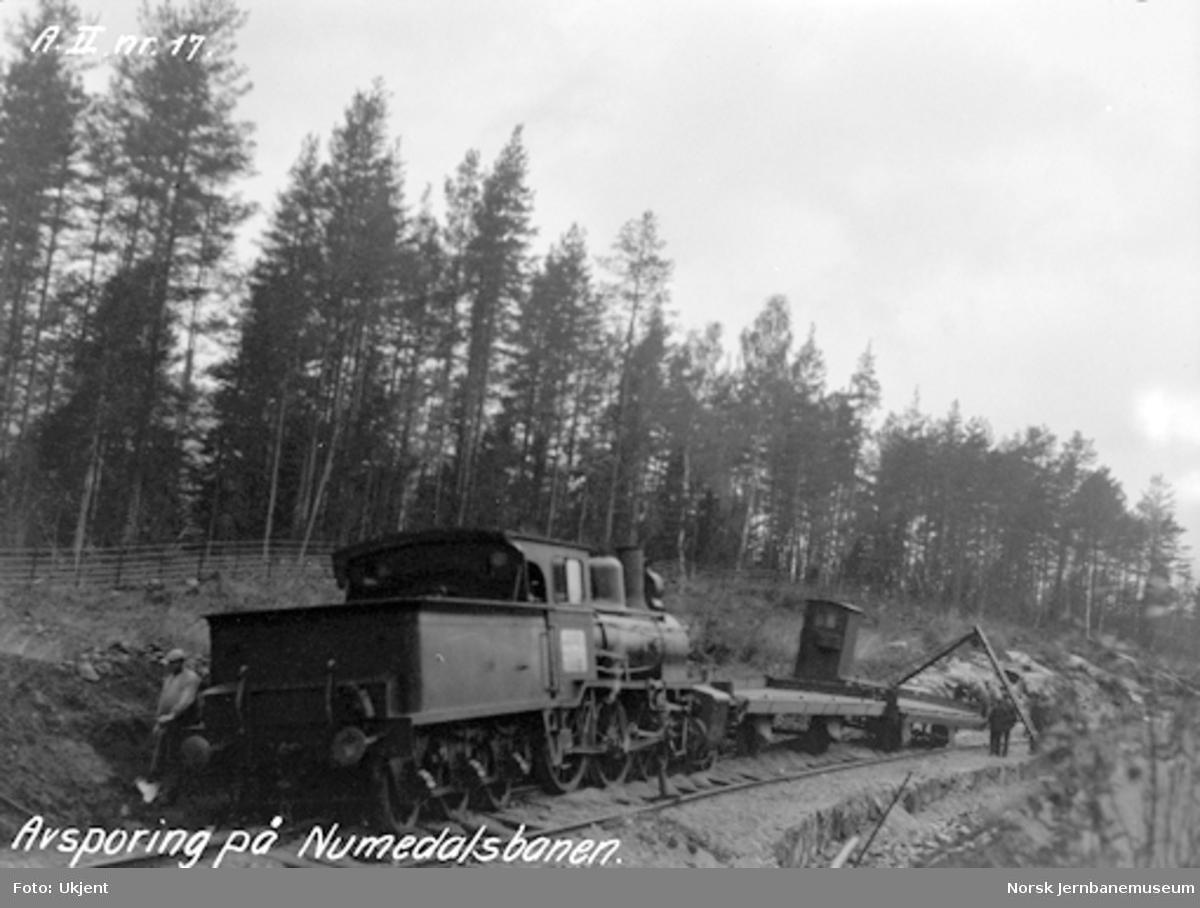 Numedalsbanen : avsporet tog